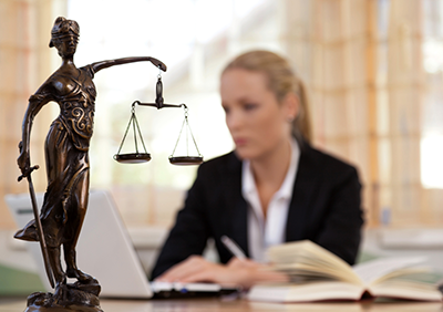 Advocacy Skills in Cases of Persons with Mental Disabilities: The Role of Lawyers and Experts