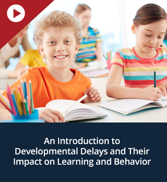 An Introduction to Developmental Delays and Their Impact on Learning and Behavior